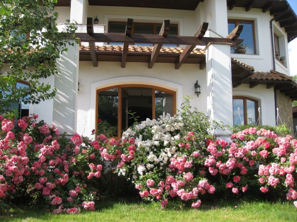 Цветочный дизайн территории возле дома