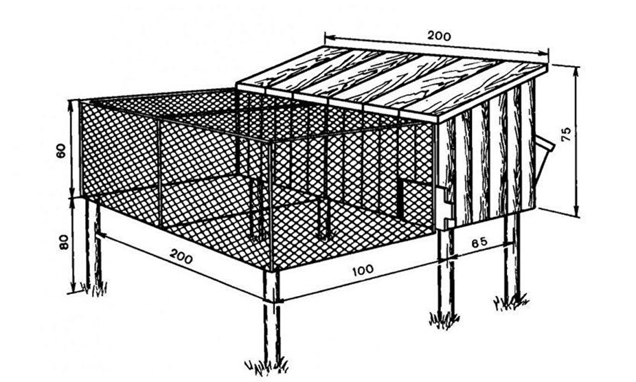 Пример клетки