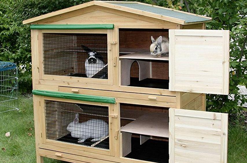 фото домашних крольчатников женского арсенала