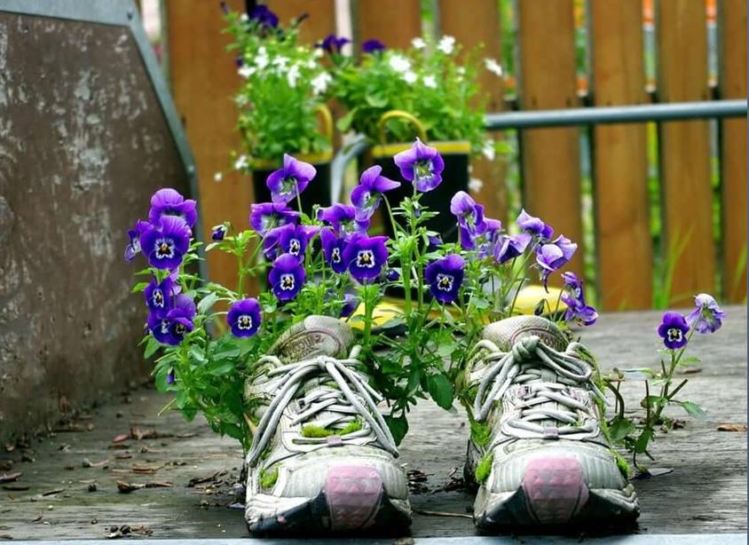 Вторая жизнь обуви
