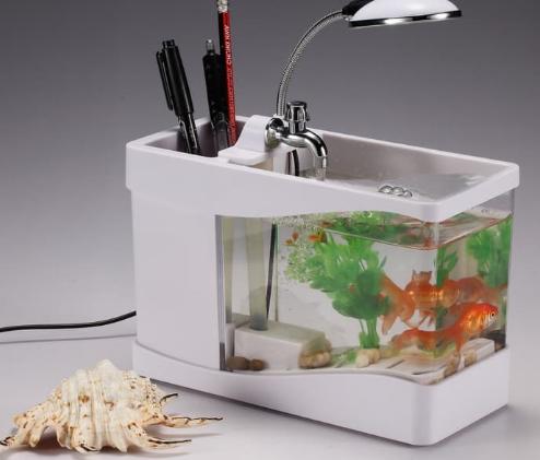 Мини - аквариум