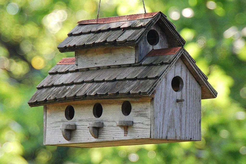 Конструкция для нескольких птичек
