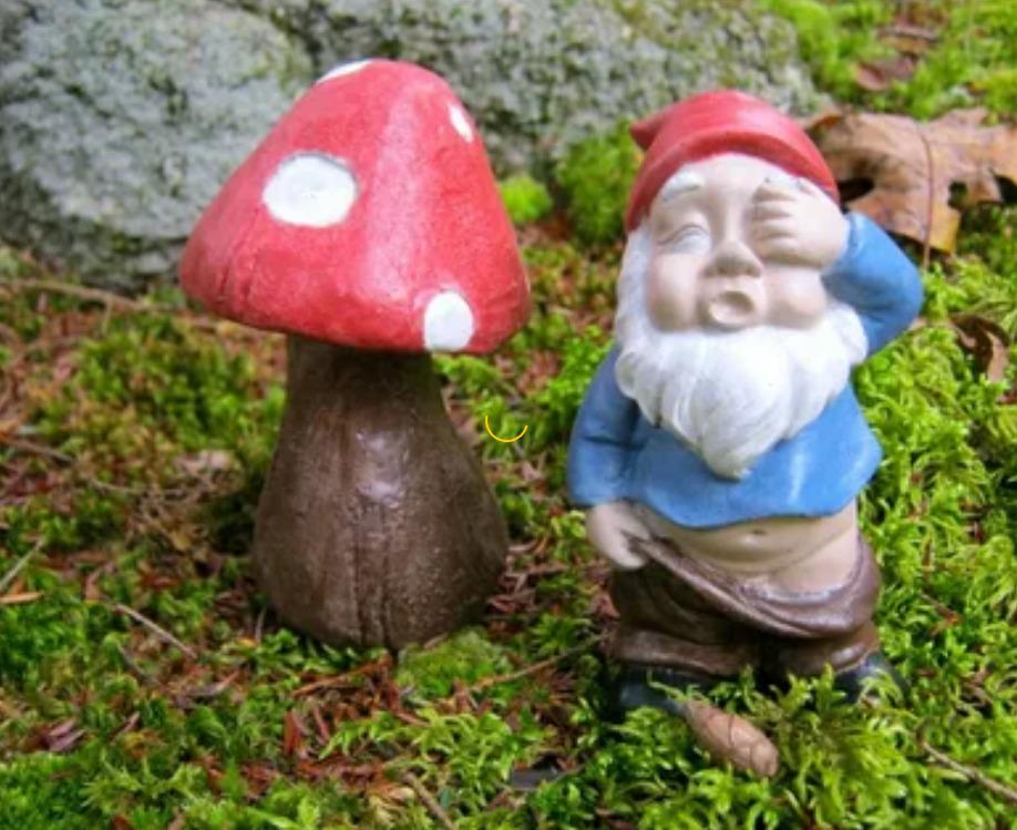 Гномик и грибочек