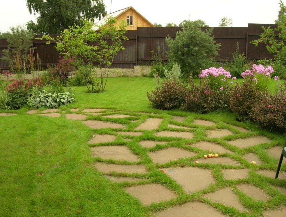 Газонная трава между камнями дорожки