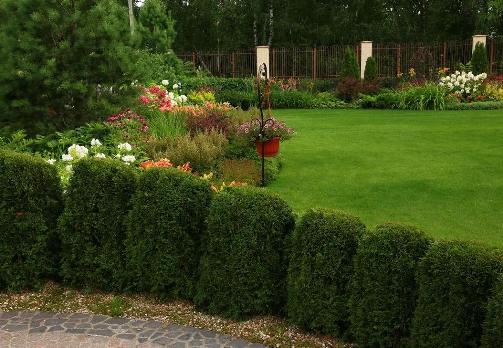 Пример разметки газона высокими кустами