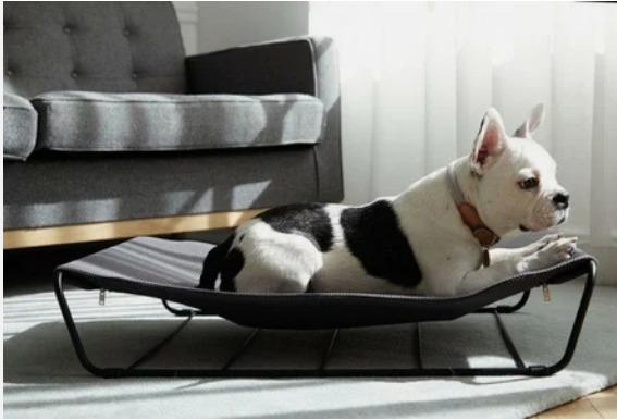 Раскладушка для собак