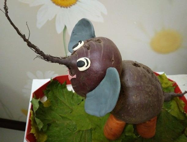 Слон из свеклы